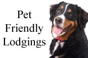 Pet Friendly Lodgings