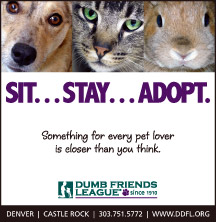 Sit...Stay...Adopt - Something for every pet lover is closer than you think. Dumb Friends League since 1910. Denver, Castle Rock, 303-751-5772, www.ddfl.org