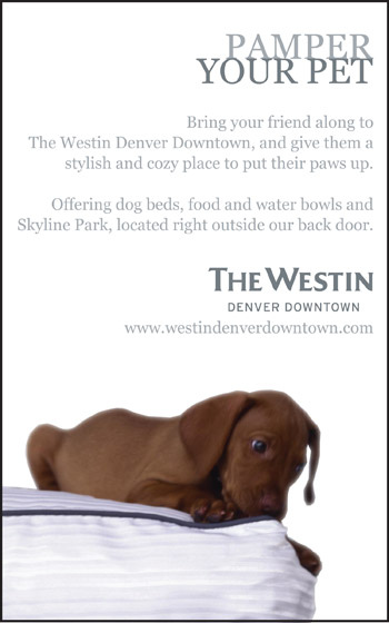 Pamper Your Pet - The Westin, Denver Downtown