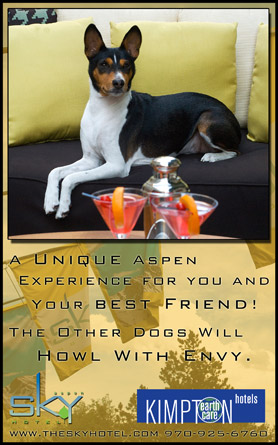 Aspen Sky Hotel, a unique Aspen experience for you and your best friend! The other dogs will howl with envy. 970-925-6760